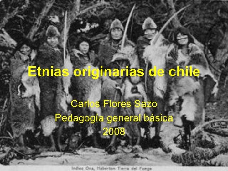 Etnias Originarias De Chile