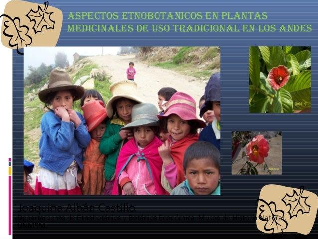 ASPECTOS ETNOBOTANICOS EN PLANTAS MEDICINALES DE USO TRADICIONAL EN LOS ANDES Joaquina Albán Castillo Departamento de Etno...