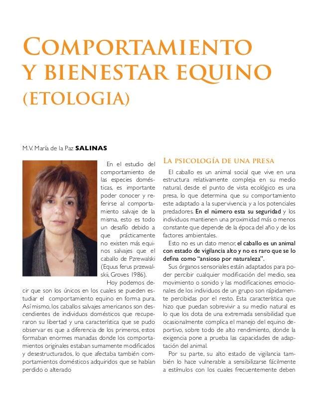 Etología comportamiento equino