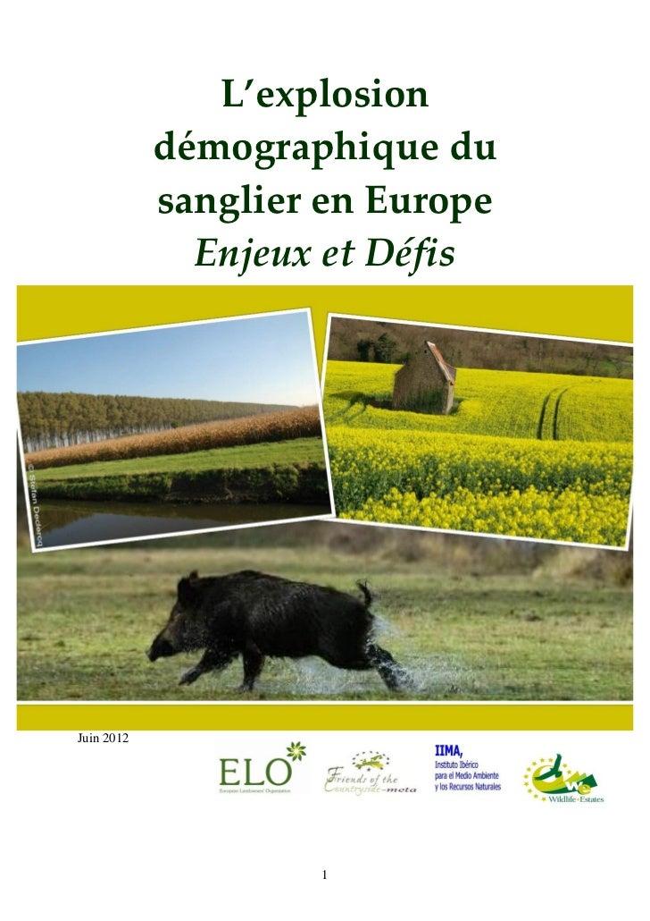 L'explosion            démographique du            sanglier en Europe              Enjeux et DéfisJuin 2012               ...