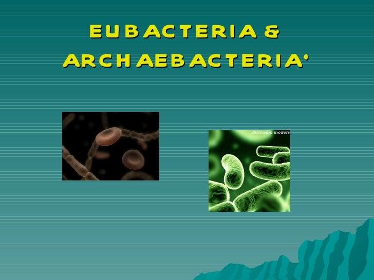 EUBACTERIA & ARCHAEBACTERIA`