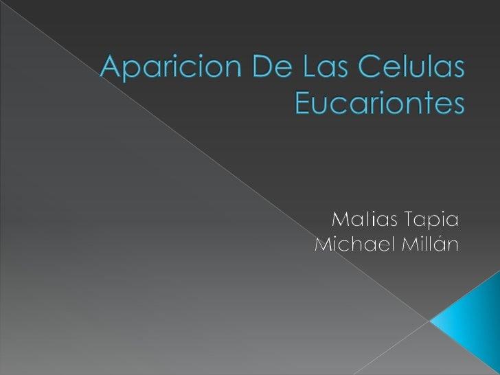 Aparicion De Las Celulas Eucariontes<br />Matias Tapia <br />Michael Millán<br />