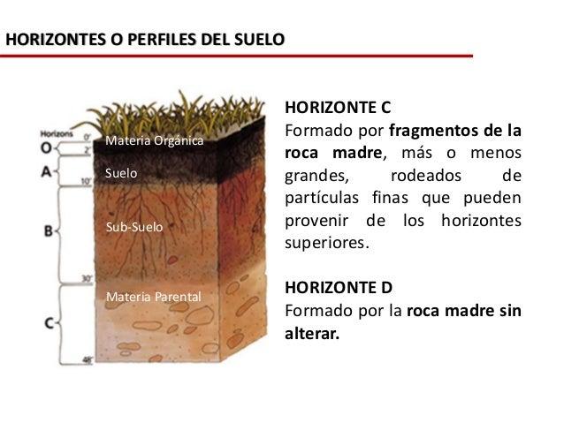 La formaci n de los suelos for Perfil del suelo wikipedia