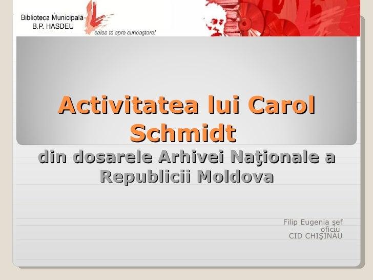 Activitatea lui Carol Schmidt