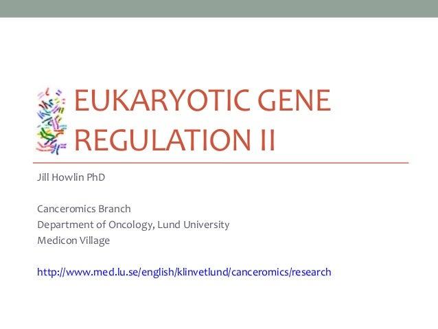 EUKARYOTIC GENE REGULATION II Jill Howlin PhD Canceromics Branch Department of Oncology, Lund University Medicon Village h...