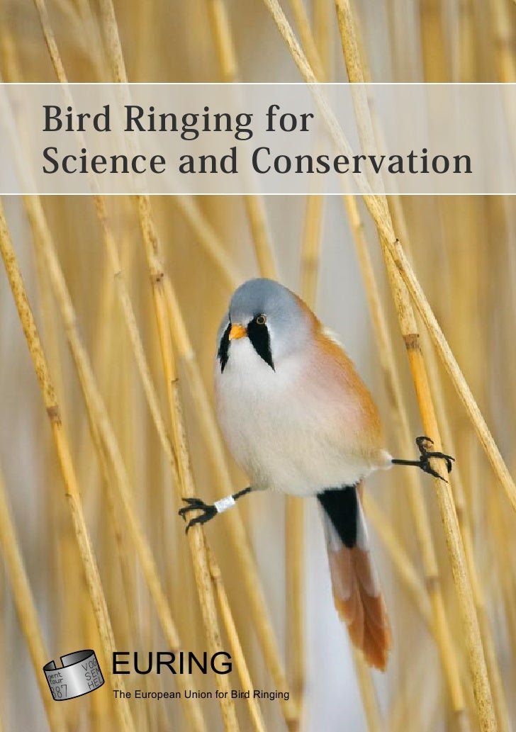 Bird Ringing for Science and Conservation        EURING    The European Union for Bird Ringing