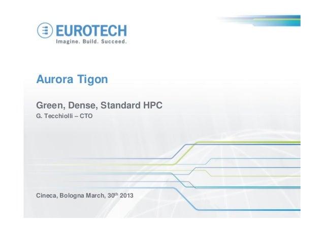 Eurotech 30 01 2013