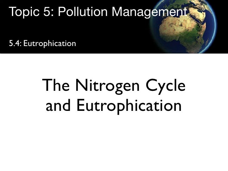 Topic 5: Pollution Management  5.4: Eutrophication              The Nitrogen Cycle          and Eutrophication