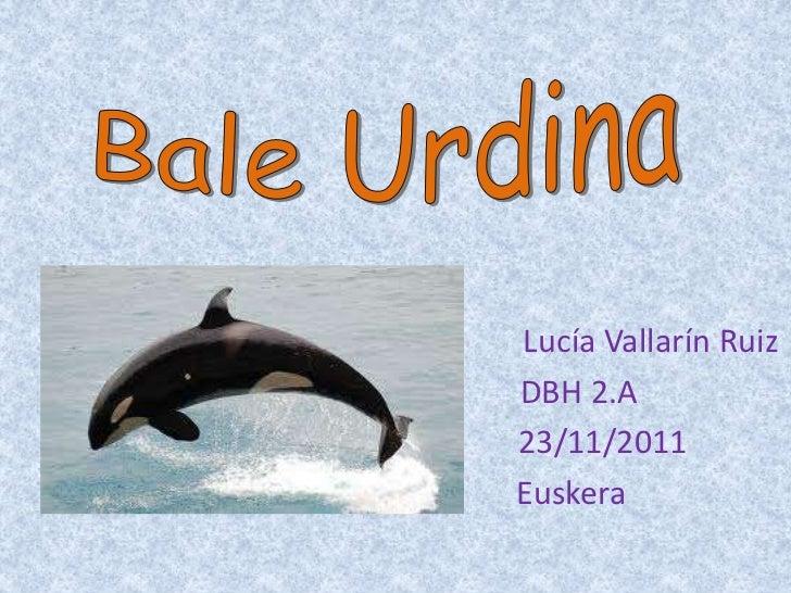 Lucía Vallarín RuizDBH 2.A23/11/2011Euskera