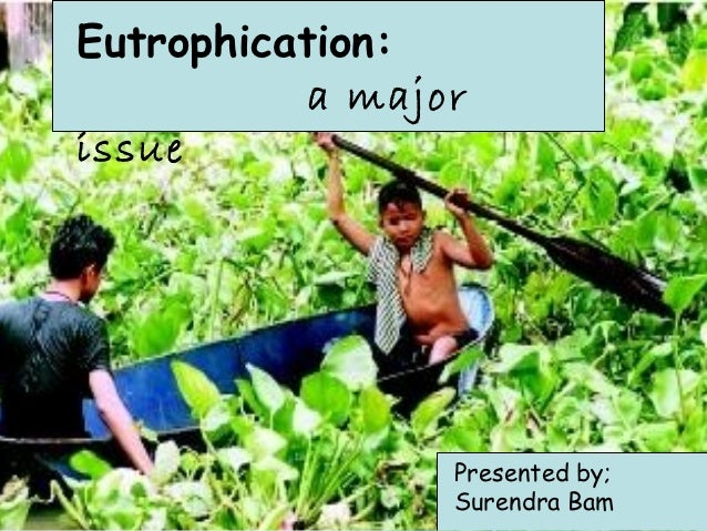 Eutrophication:           a majorissue                 Presented by;                 Surendra Bam