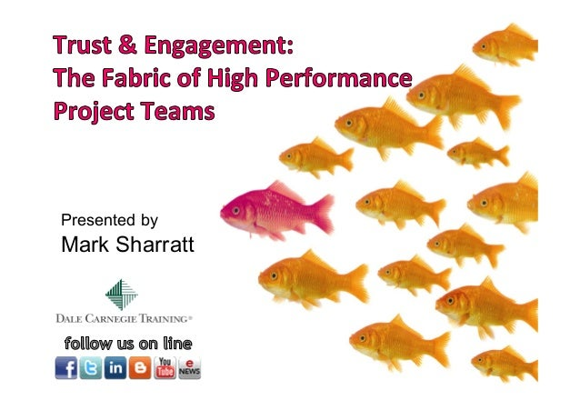 Trust & Engagement: The Fabric of High Performance Project Teams