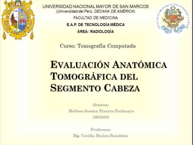 UNIVERSIDAD NACIONAL MAYOR DE SAN MARCOS  (Universidad del Perú, DECANA DE AMÉRICA)  FACULTAD DE MEDICINA  E.A.P. DE TECNO...