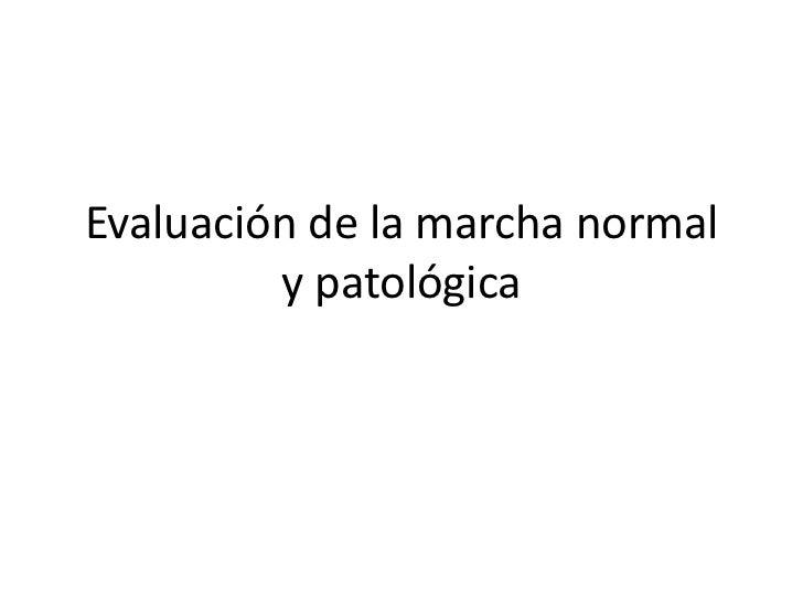 Evaluación de la marcha normal         y patológica