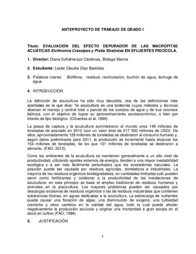 1 ANTEPROYECTO DE TRABAJO DE GRADO I Título: EVALUACIÓN DEL EFECTO DEPURADOR DE LAS MACRÓFITAS ACUÁTICAS Eichhornia Crassi...