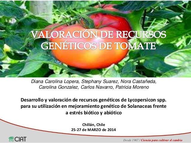 Desde 1967 / Ciencia para cultivar el cambio Desarrollo y valoración de recursos genéticos de Lycopersicon spp. para su ut...