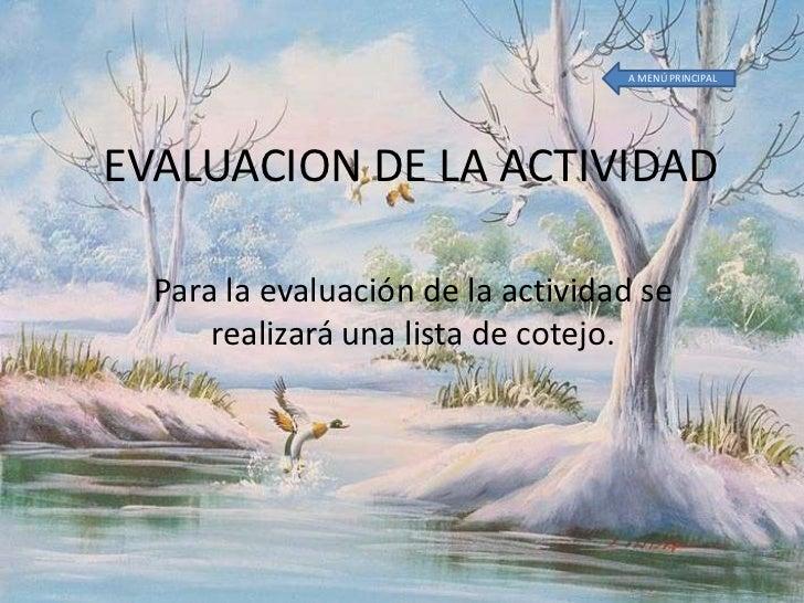 Evaluacion De La Actividad