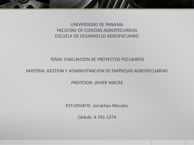 UNIVERSIDAD DE PANAMAFACULTAD DE CIENCIAS AGROPECUARIASESCUELA DE DESARROLLO AGROPECUARIOTEMA: EVALUACION DE PROYECTOS PEC...