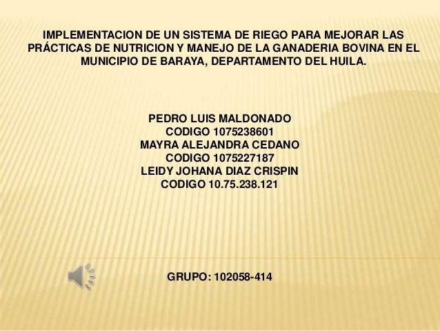 IMPLEMENTACION DE UN SISTEMA DE RIEGO PARA MEJORAR LAS PRÁCTICAS DE NUTRICION Y MANEJO DE LA GANADERIA BOVINA EN EL MUNICI...
