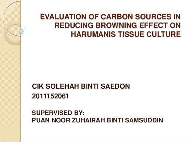 EVALUATION OF CARBON SOURCES IN REDUCING BROWNING EFFECT ON HARUMANIS TISSUE CULTURE  CIK SOLEHAH BINTI SAEDON 2011152061 ...