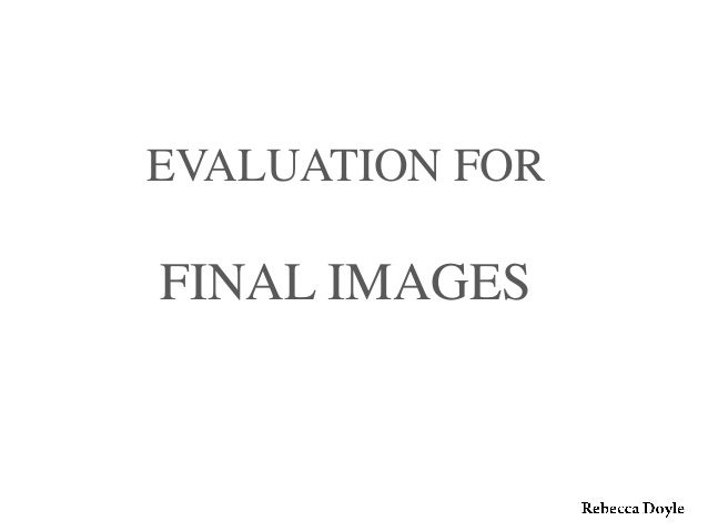 Evaluation of final images pp