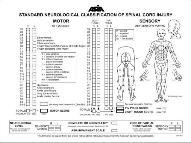 evaluation of spinal injury  u0026 emergency management