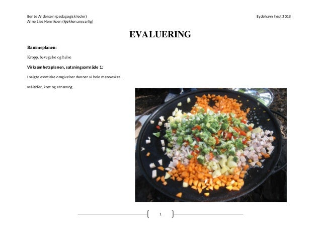 Evaluering   måltider, kost og ernæring