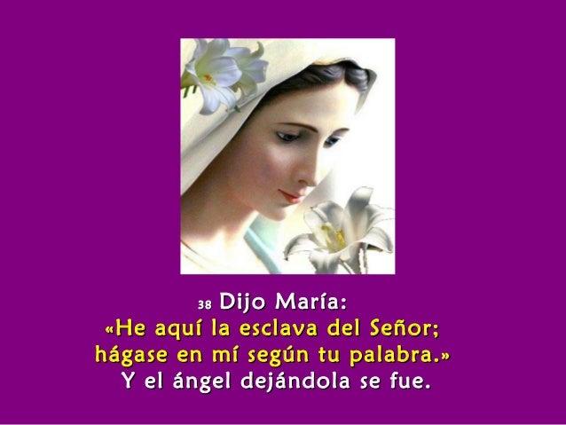 3838 Dijo María:Dijo María: «He aquí la esclava del Señor;«He aquí la esclava del Señor; hágase en mí según tu palabra.»há...