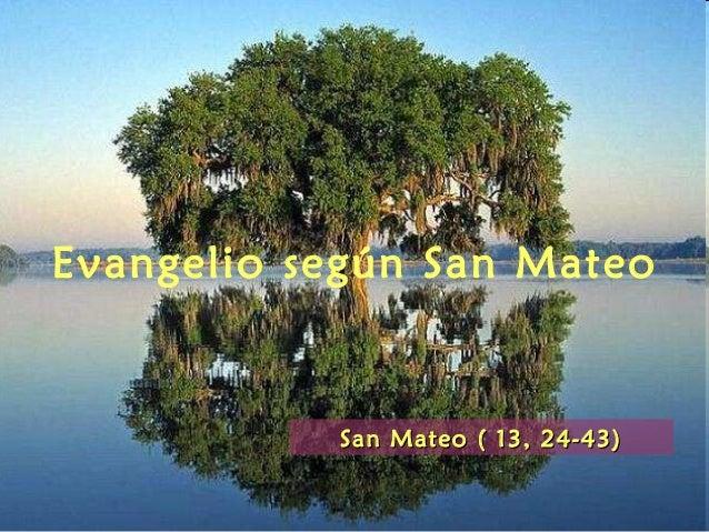 Evangelio según San Mateo San Mateo ( 13, 24-43)San Mateo ( 13, 24-43)