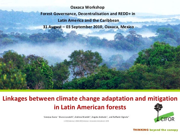 Linkages between climate change adaptation and mitigation in Latin American forests <ul><li>Vanessa Evans  1,  Bruno Locat...