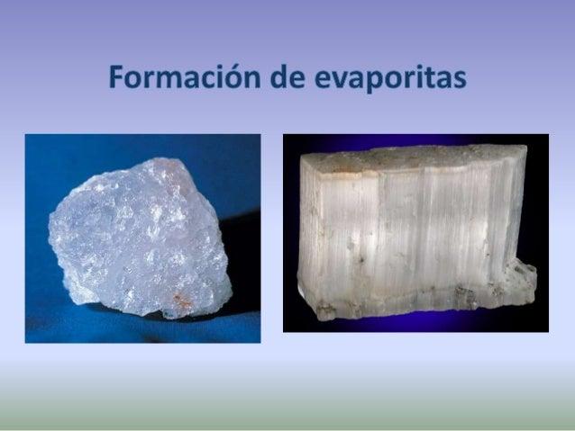 Climas cálidos y secos Marismas y lagunas costeras evaporación Acumulación de cristales de halita Sal roca Acumulación de ...