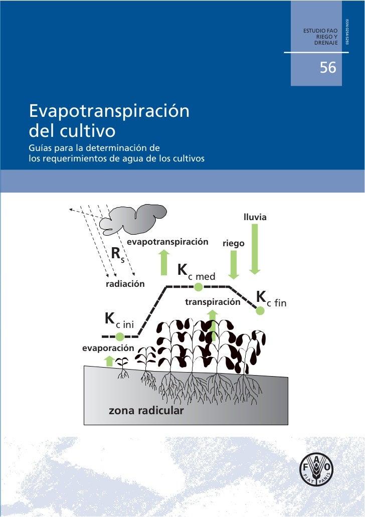 ISSN 0254-5293                                                                 ESTUDIO FAO                                ...