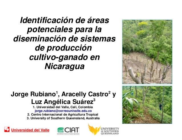 Identificación de áreas potenciales para la diseminación de sistemas de producción cultivo-ganado en Nicaragua Jorge Rubia...