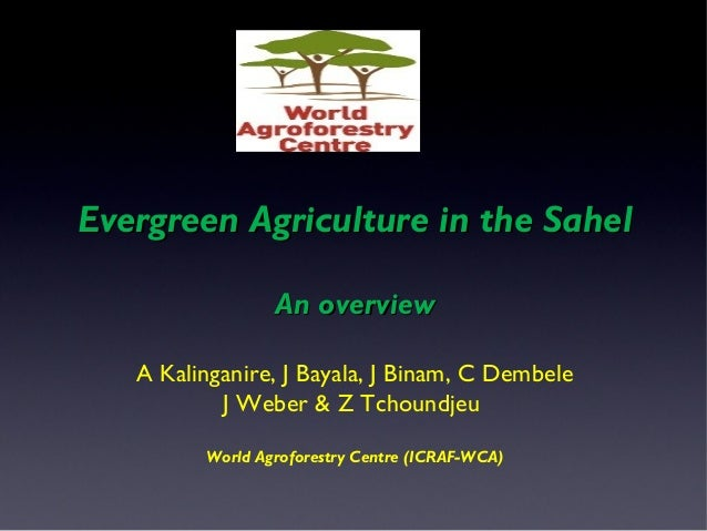 Ever green sahel    an overview antoine kalinganire et al.