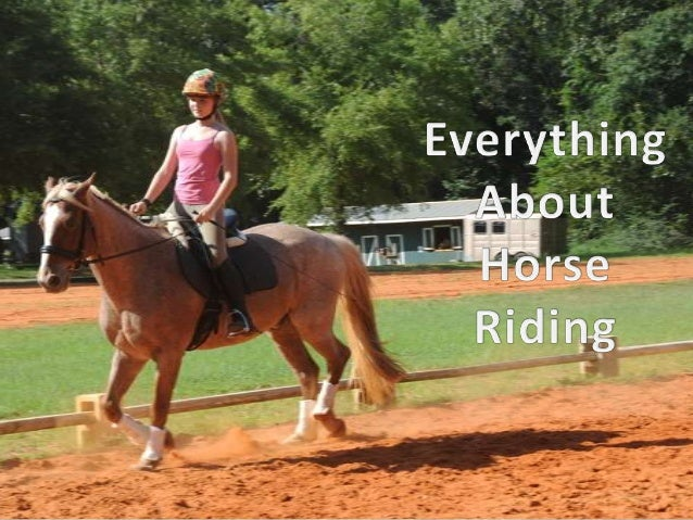 """Equestrianism • Horseback Riding is also known as """"Equestrianism"""" • It is the action of sitting on a horse's back while co..."""