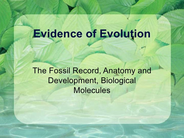 Evidence of Evolution The Fossil Record, Anatomy and Development, Biological Molecules
