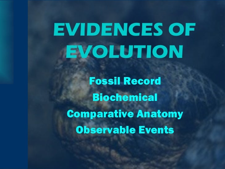 EVIDENCES OF EVOLUTION <ul><li>Fossil Record </li></ul><ul><li>Biochemical </li></ul><ul><li>Comparative Anatomy </li></ul...