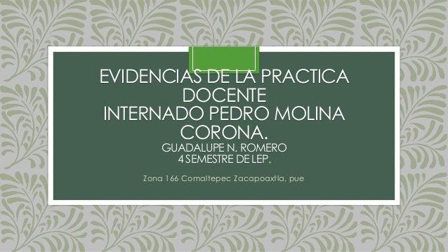 EVIDENCIAS DE LA PRACTICA DOCENTE INTERNADO PEDRO MOLINA CORONA. GUADALUPE N. ROMERO 4 SEMESTRE DE LEP. Zona 166 Comaltepe...