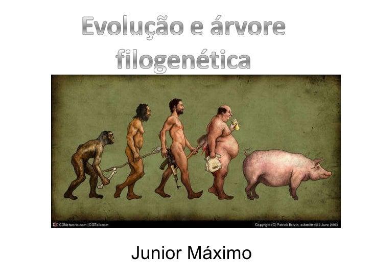 Junior Máximo