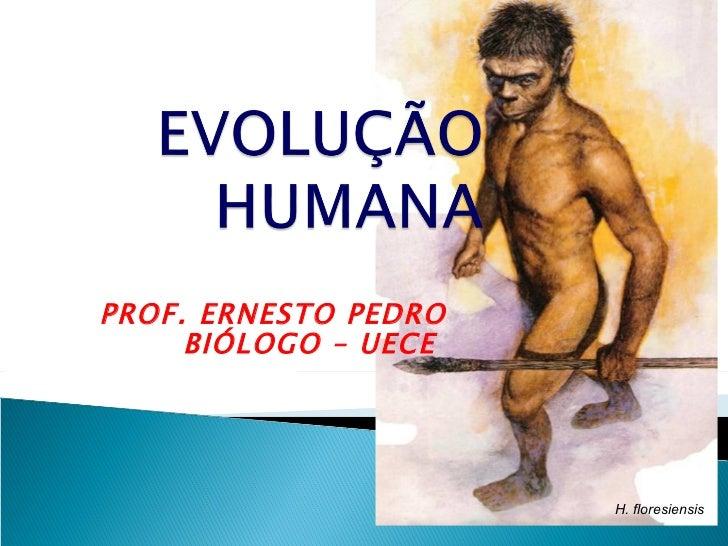 PROF. ERNESTO PEDRO     BIÓLOGO – UECE                      H. floresiensis