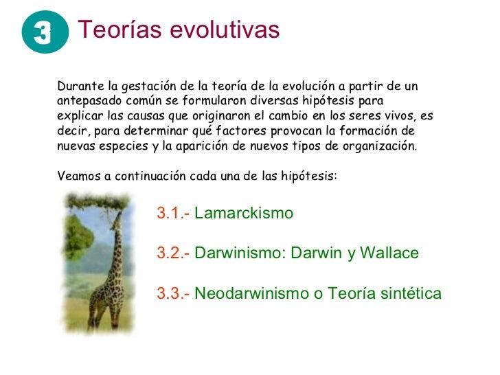 Teoria Sintetica Evolucion de la Jirafa la Teoría de la Evolución