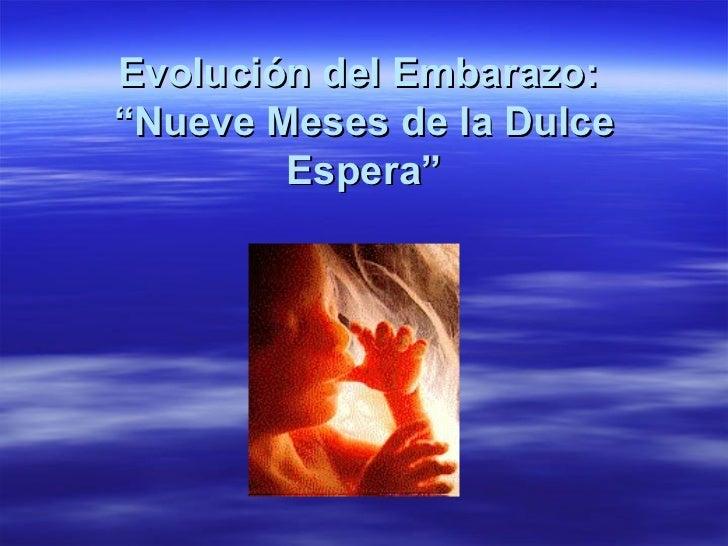 """Evolución del Embarazo:  """"Nueve Meses de la Dulce Espera"""""""