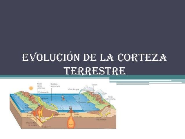 EVOLUCIÓN DE LA CORTEZATERRESTRE