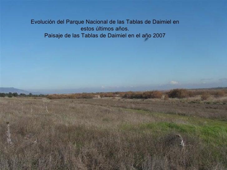 Evolución del Parque Nacional de las Tablas de Daimiel en estos últimos años. Paisaje de las Tablas de Daimiel en el año 2...