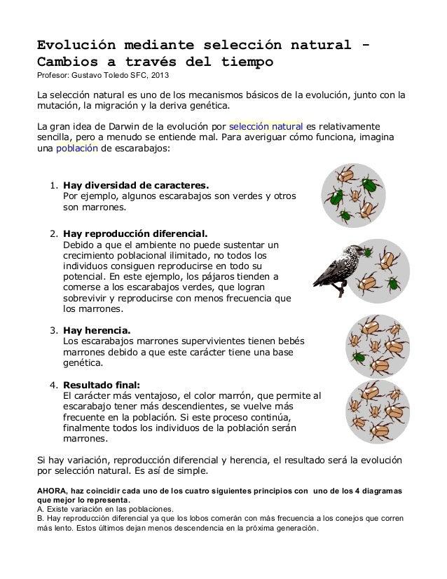 Evolución mediante selección natural - Cambios a través del tiempo Profesor: Gustavo Toledo SFC, 2013 La selección natural...