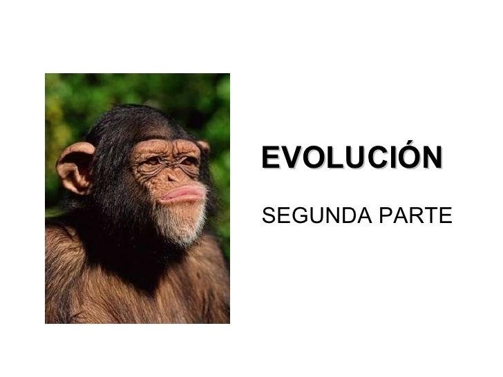 EvolucióN (Segunda Parte)