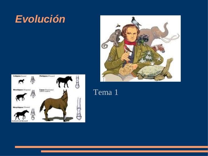 Evolución            Tema 1