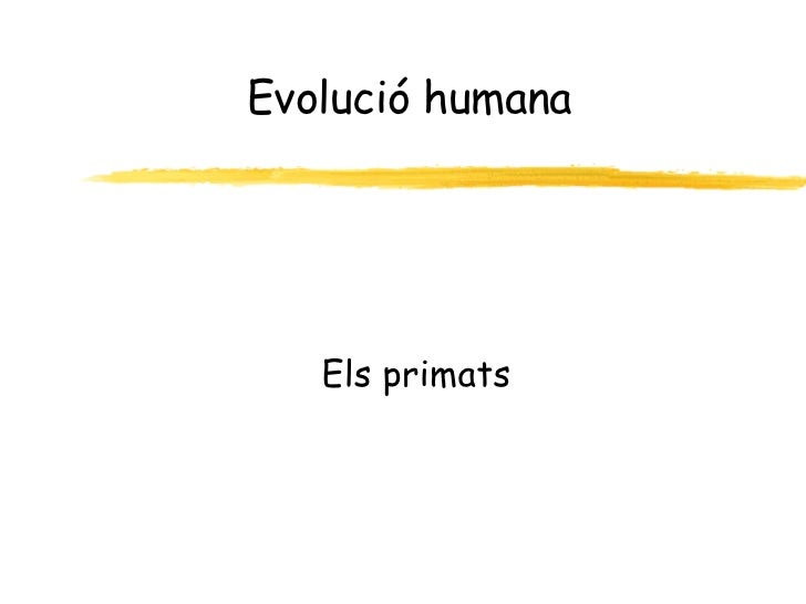 Evolucio Humana Final (Pp Tminimizer)