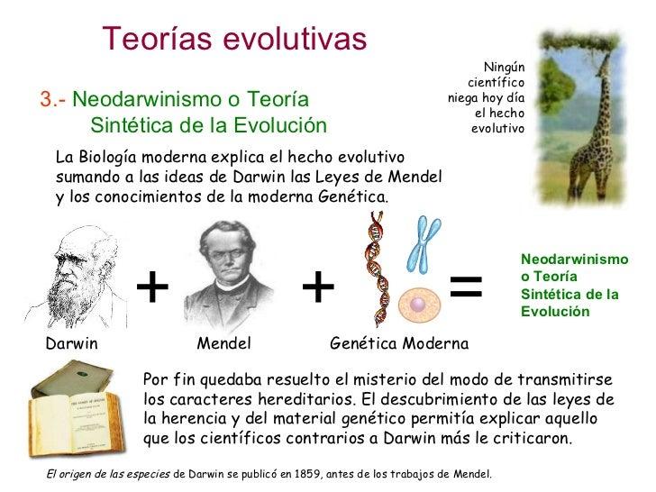 Teoria de la Evolucion Sintetica Sintética de la Evolución la
