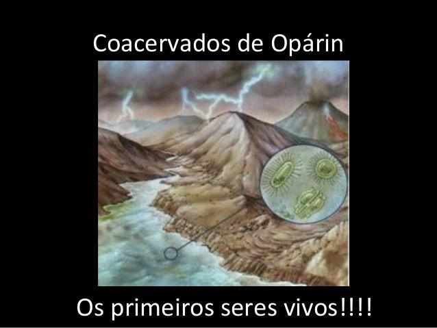 Coacervados de OpárinOs primeiros seres vivos!!!!