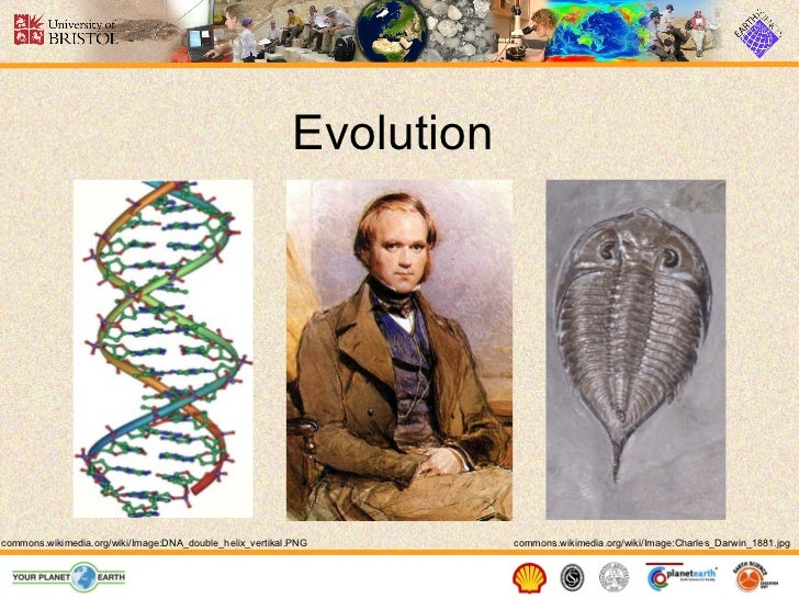 Evolution commons.wikimedia.org/wiki/Image:Charles_Darwin_1881.jpg commons.wikimedia.org/wiki/Image:DNA_double_helix_verti...
